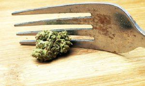 Eating-Cannabis