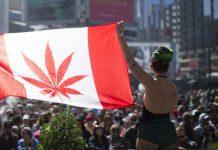 Kanada jako drugi kraj na swiecie w pelni legalizuje marihuane