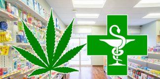 Wczoraj zatwierdzono wniosek o import medycznej marihuany z Kanady