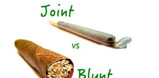 Blunty vs. Jointy - co jest lepsze?