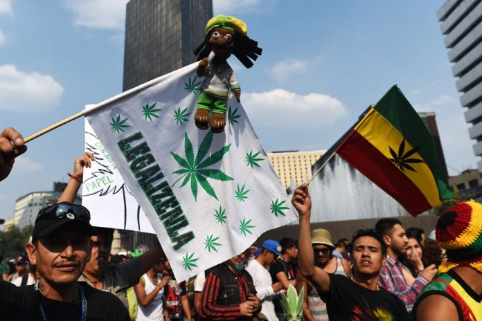 Zakaz uzywania marihuany jest niekonstytucyjny