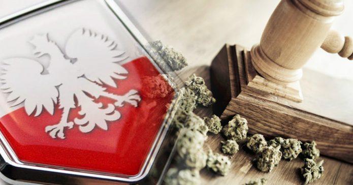 Posiadanie niewielkiej ilosci marihuany karane tylko mandatem