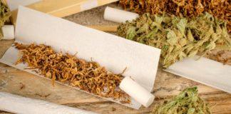 powody dla ktorych powinienes przestac mieszac marihaune z tytoniem