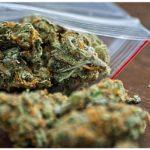 Jak nie przechowywać marihuany