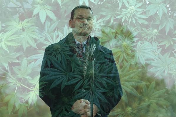 Morawiecki zasypany pytaniami internautów o legalizację marihuany.