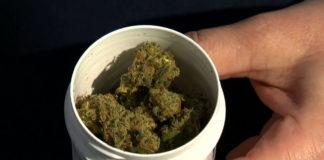 policja odebrała mu medyczną marihuanę