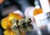 Spectrum Therapeuctics walczy o tańszą marihuanę