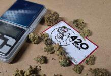 Świdnik marihuana