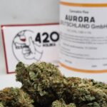 marihuana bół dawka