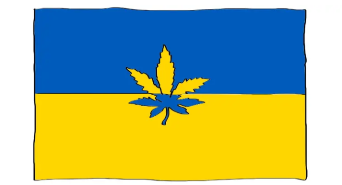 Marihuana konopie ukraina