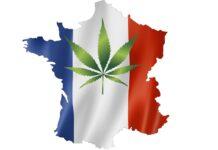 francja refundacja marihuana