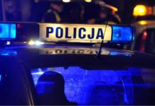 Skępe: policjant uprawiał konopie indyjskie