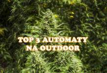 automaty outdoor