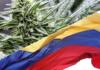 kolumbia liderem w eksporcie marihuany