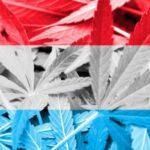 Luksemburg legalizuje marihuanę